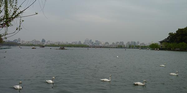 Западное озеро - Ханой, Вьетнам | обзор, фото, как добраться ...